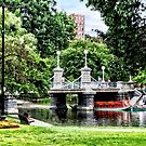 Boston MA - Boston Public Garden Bridge by Susan Savad