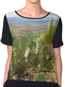 Tonto State Forest, Arizona Women's Chiffon Top