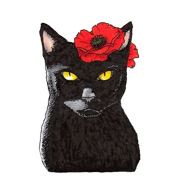 Black Cat with Golden Eyes and Poppy Illustration by juliawaters