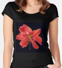 Scarlet Lily on Black Background Women's Fitted Scoop T-Shirt