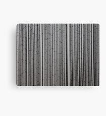 Wire Canvas Print