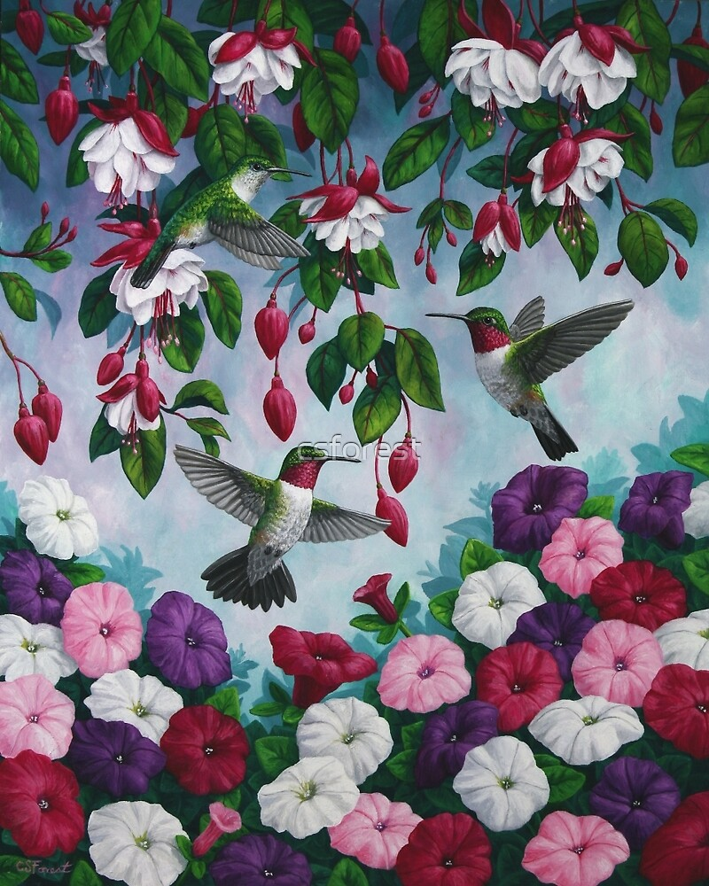 Hummingbirds and Fuchsias Purple by csforest