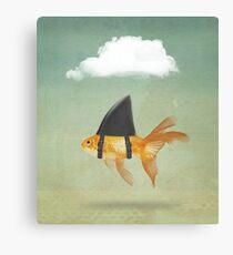Under a Cloud, Goldfish with a Shark fin Canvas Print