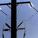 Electric. by ronsphotos