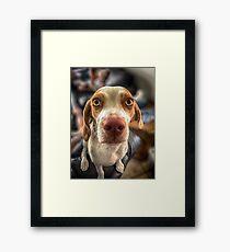 Bacon? Framed Print