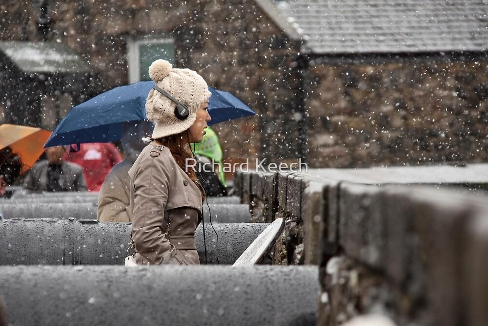 Snowing view by Richard Keech