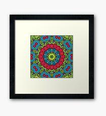 Psychedelic LSD Trip Ornament 0011 Framed Print