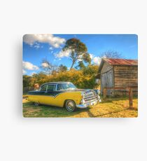 Bush Classics Canvas Print