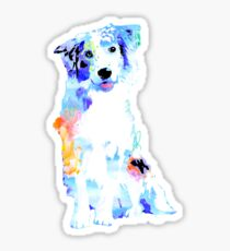 australian shepherd watercolor pet portrait | Jacks Sticker