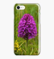 Pyramidal Orchid, Inishmore iPhone Case/Skin