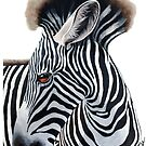 Baby Zebra - wild animal art by LindaAppleArt