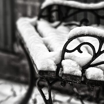 Bench in Snow by InspiraImage
