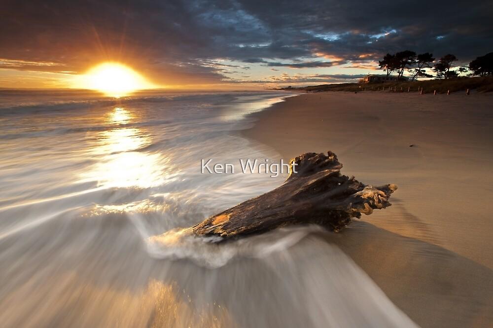 Papamoa Domain Surf Stump by Ken Wright