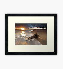 Papamoa Domain Surf Stump Framed Print