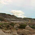 Alberta Badlands Panorama by Tracy Friesen