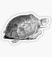 Drudge Reptile  Sticker