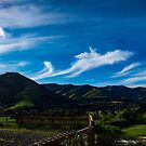 The Volcanic Hills by PictureNZ