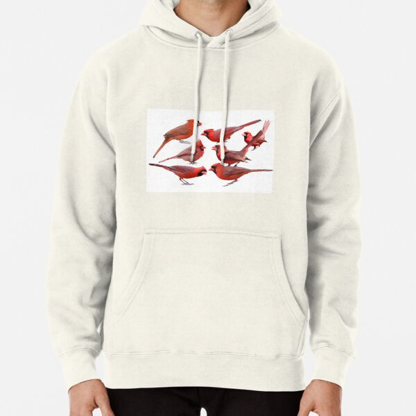 Seven Red Birds A Chirping Pullover Hoodie