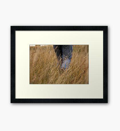 Walking through the fields Framed Print