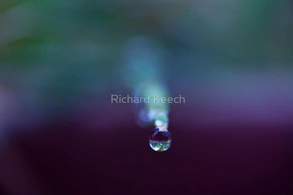 """""""Cold, So very cold"""" by Richard Keech"""