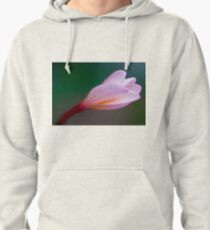Pretty in pink Pullover Hoodie