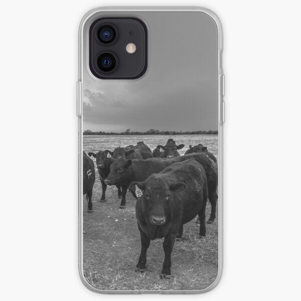 Hanging Out - Angus Cows Gather as Storm Brews in Kansas iPhone Soft Case