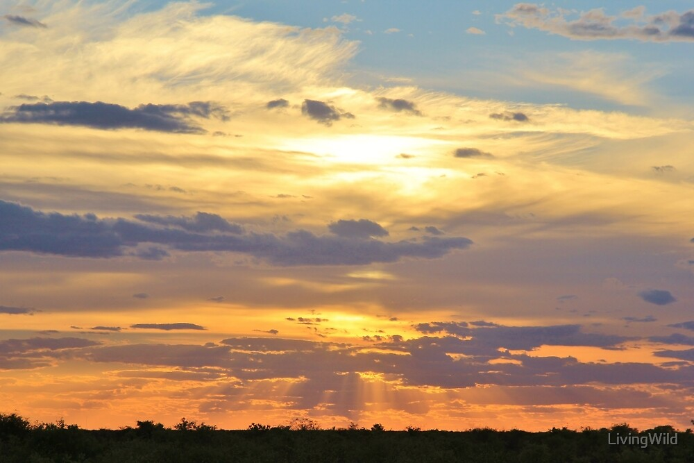 Sunset Background - Tranquil Harmony of Beauty  by LivingWild