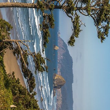 Cannon Beach View Perspective #2 by mspixvancouver