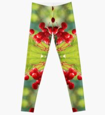 Kalina Mosaic Leggings