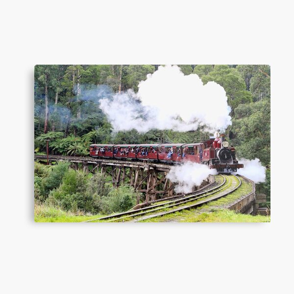Steaming Along Metal Print
