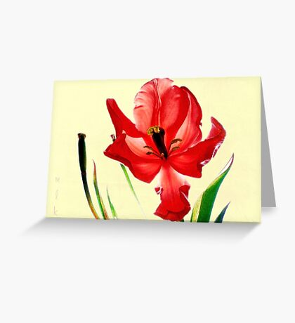 December's Red Tulip Greeting Card