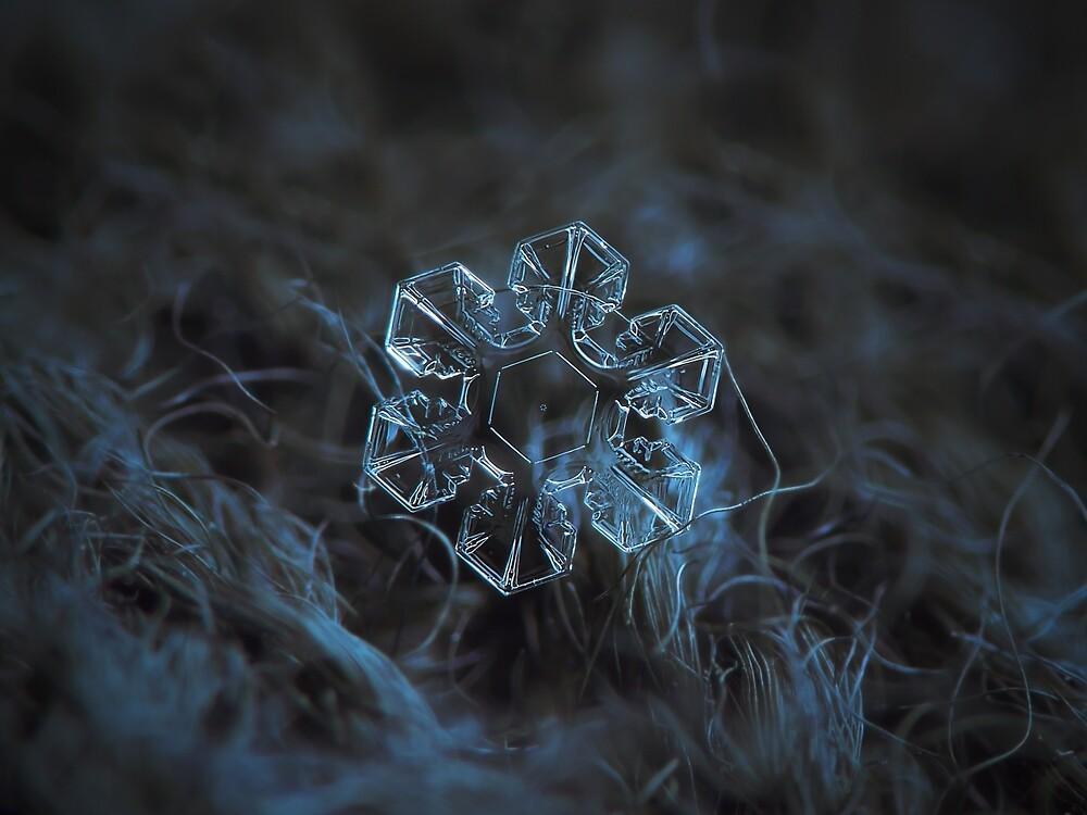 The core, snowflake macro photo by Alexey Kljatov