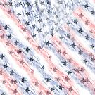Stars and Stripes by saleire
