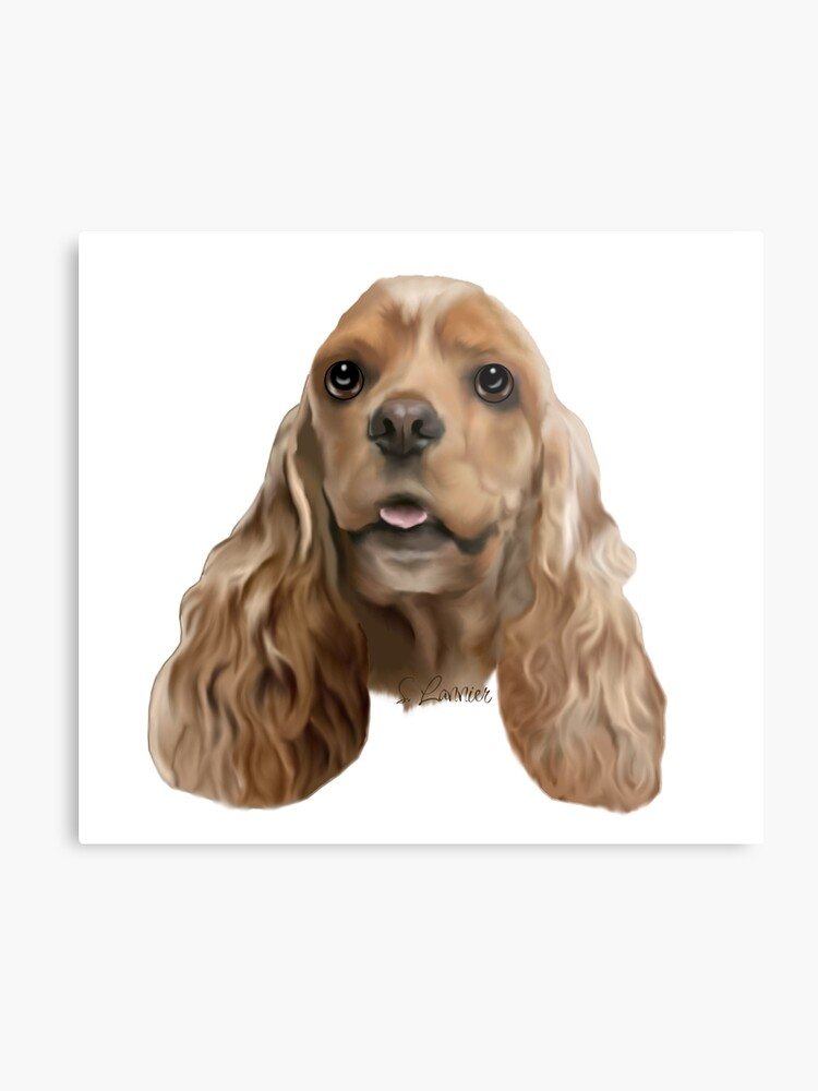 6824310b952f Blonde Cocker Spaniel Dog Portrait | Metal Print