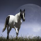 Lunar Horse [Prints, iPhone/iPod cases, Clothing] by James Cole