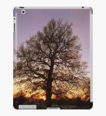 Winter Tree Scene iPad Case/Skin