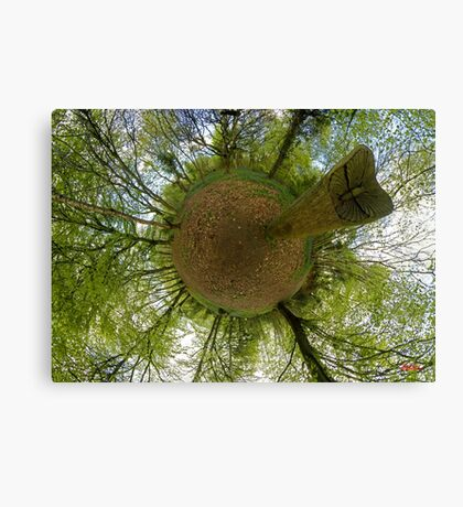 Butterfly Sculpture in Prehen Woods, Derry Canvas Print