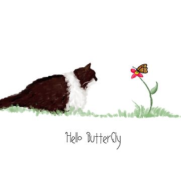 Hello Butterfly - Honey the Mog by quirkyquail