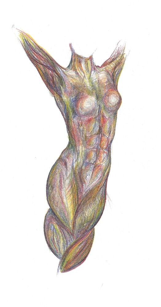 Braided Legs (tri-colored pencil) by mugs-munny