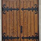 Oak Doors by Ethna Gillespie