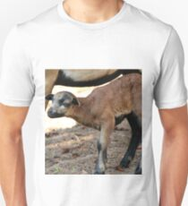 Cameroon Baby Sheep Unisex T-Shirt