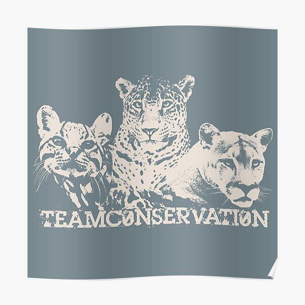 Big Cats Team Conservation Design Poster