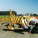 Dornier G.91R-3 5452 in Tiger Markings by Colin Smedley