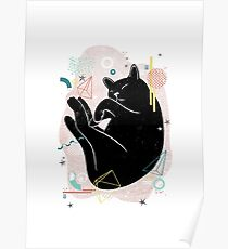 Sleeping Kitten illustration Poster