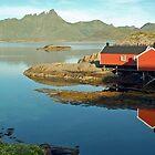 Mortsund - Lofoten - Norway by Arie Koene