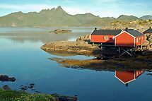 Mortsund - Lofoten - Norway by Arie Koene