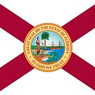 Flag of Florida, 1900-1985 by abbeyz71