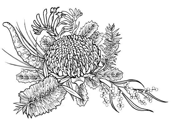Australian native flowers photographic prints by charlifaure australian native flowers by charlifaure mightylinksfo