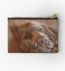 Sleepy Sussex Spaniel Studio Pouch