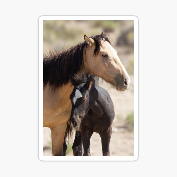 Mom & Baby Sticker